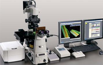 尼康a1激光共聚焦显微镜-北京鑫励扬科技发展有限